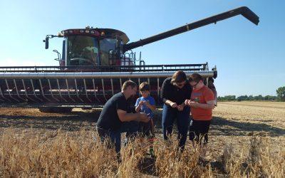 Is farming worth it?