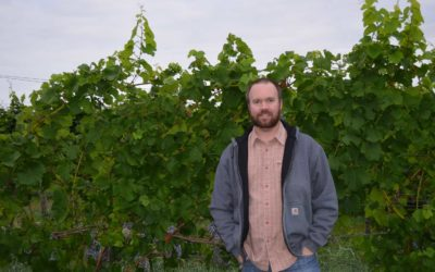 Brian Lesperance of Fenn Valley Vineyards