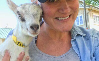 Amy Spitznagel, Idyll Farms